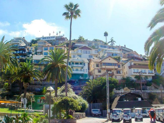 Los-angeles-Catalina-Island-6