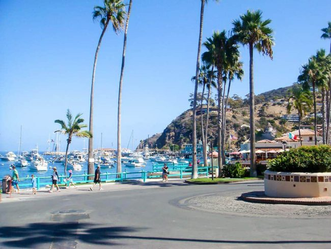 Los-angeles-Catalina-Island-8