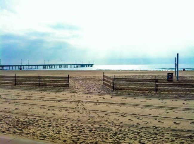 Los-angeles-Venice-Beach-1