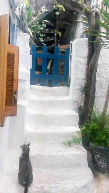 greek-athen8