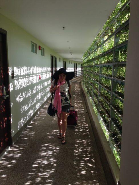 phuket-thailand19